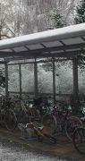 027-carport-witzenhausen