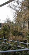 081-terrassendach-eschwege